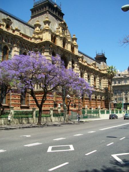 Старый Буэнос-Айрес: водопровод, канализация и её обитатели
