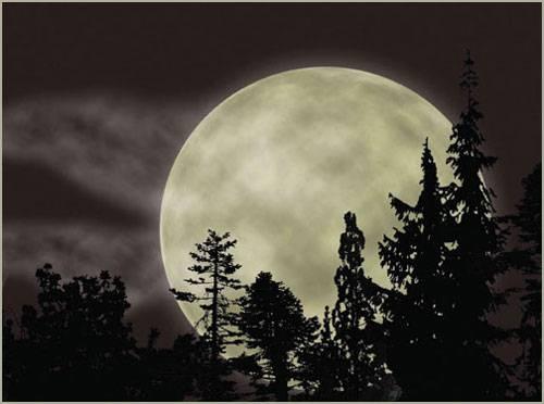 Луна – седьмой континент