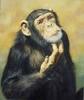 О дарвинизме