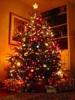 Последний день декабря